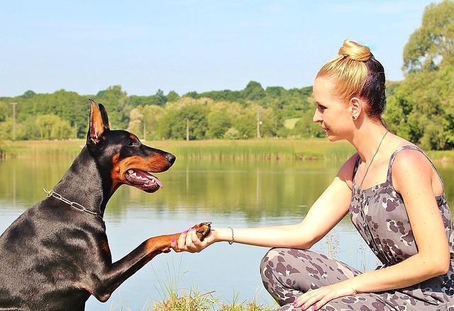woman, dog, paw